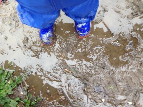 haysden muddy4